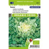 Sluis Garden Andijvie biologische zaden - Nuance