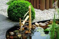 Waterornament Bamboo