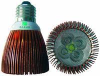 Parus LED bulb e-06 60 graden sun 6w