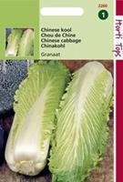 Hortitops Chinese Kool Granaat, Zelfsluitend