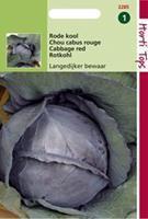 Hortitops Rodekool Langedijker Bewaar 2