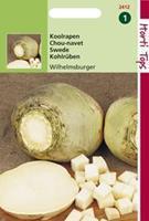 Hortitops Koolraap Brassica napus var. nap. Wilhelmsburger Type Friese - Groentezaden - 5gram
