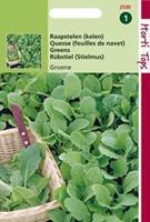Hortitops Raapstelen Groene
