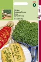 Hortitops Tuinkers Lepidium sativum Grootbladige (Breedbladige) - Groentezaden - 15gram