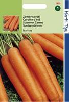 Hortitops Wortelen Daucus carota Nantes - 2 Halflange - Groentezaden - 6gram
