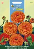 Buzzy Calendula Officinalis Dubbelbl.Ball S Oranje