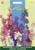 Buzzy Delphinium consolida Imperial Gemengd