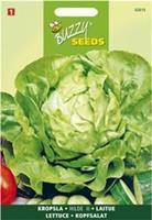 Buzzy seeds zaden kropsla hilde attractie