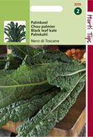 Hortitops Palmkool Brassica oleracea var. acephala Nero di Toscane - Groentezaden - 2gram