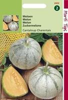 Hortitops Meloen Cucumis melo Charentais - Fruitzaden - 1g