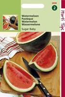 Hortitops HT Watermeloenen Sugar Baby