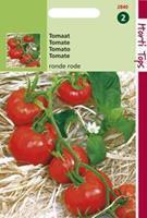 Hortitops Tomaten Solanum lycopersicum L. (syn L. esculentum) St. Pierre grote vollegrondse - Groentezaden - 1,5gram