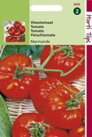 Hortitops Tomaten Marmande Vleestomaat