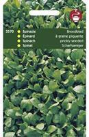 Hortitops Spinazie Spinacia oleracea Breedblad Scherpzaad,Zomer 50Gr - Groentezaden - 50gram