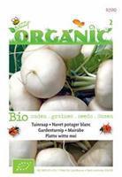Buzzy Organic Raapstelen (blad) Tuinplus