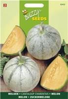 Buzzy Meloenen Charentais