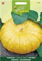 Buzzy seeds zaden pompoen geelvlezige