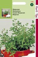 Hortitops Majoraan