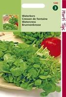 Hortitops Waterkers Nasturtium officinale Waterkers - Groentezaden - 0,75gram
