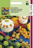 Hortitops Ananaskers Peruviana Physalis peruviana - Groentezaden - 5gram