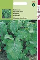 Hortitops Snijmoes Quesse de Groningue - Snijmoes Blauwe Groninger Blauwe Groninger - Groentezaden - 5gram