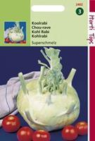 Hortitops Koolrabi Superschmelz