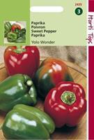 Hortitops Paprika Yolo Wonder