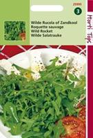 Hortitops Rucola Diplotaxis tenuifolia Wilde Selvatica (Diplotaxis Erucoides) - Groentezaden - 2gram