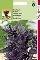 Hortitops Basilicum Ocimum basilicum purpurascens Rode - Dark Opal - Kruidenzaden - 1,5gram