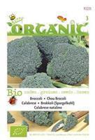 Buzzy Organic Broccoli groene Calabrese (Skal 14725)