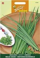 Buzzy seeds zaden bieslook grove