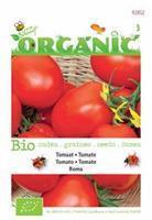 Buzzy Organic Tomaat Roma Tuinplus
