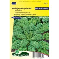 Boerenkool zaden Halfhoge groen gekrulde