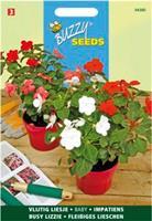Buzzy seeds zaden vlijtig liesje baby
