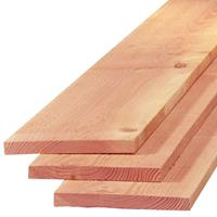 TrendHout Plank lariks douglas 2,2 x 20,0 cm (3,00 mtr) gezaagd