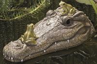 Boltze Drijvende krokodil met kikkers