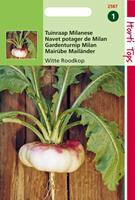 Hortitops Rapen Milanese Platte Witte Roodkop