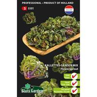 Kalettes garden mix flowersprout