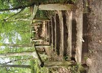 Pb-collection Tuinschilderij Forest stairs 50x70cm