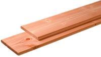 Woodvision Geschaafde/fijnbezaagde plank Douglas Geïmpregneerd 28 x 195 mm 500 cm