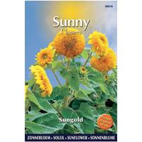 Praxis Sunny flowers sungold