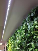 BTT & Parus Parus Linear langwerpige kweeklamp led wit 60 graden 90w 150cm