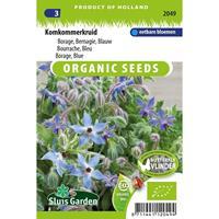 Borage blauw, komkommerkruid Borago officinalis BIO