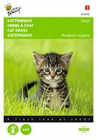 Buzzy Kattengras Gerst