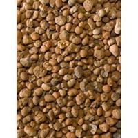 plantenwinkel.nl Hydrokorrels 8-16 mm 40 L