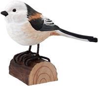 Houten staartmees vogeltje