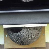 Vivara Huiszwaluwkunstnest enkel (ingang links)