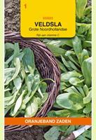 Oranjeband Veldsla Grote Noordhollandse Valerianella locusta - Sla - 5gram
