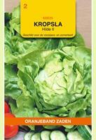 Oranjeband Kropsla Hilde 2 Lactuca sativa - Sla - 3gram