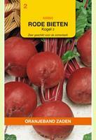 Oranjeband Rode biet Kogel 2 Beta vulgaris - Bieten - 5gram